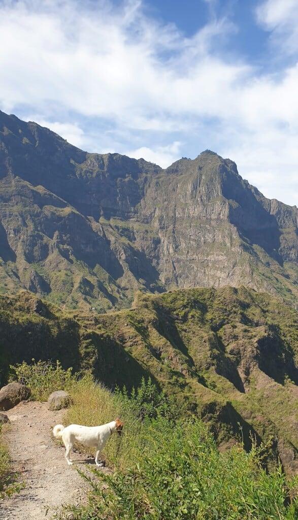 hiking in santo antao terraces