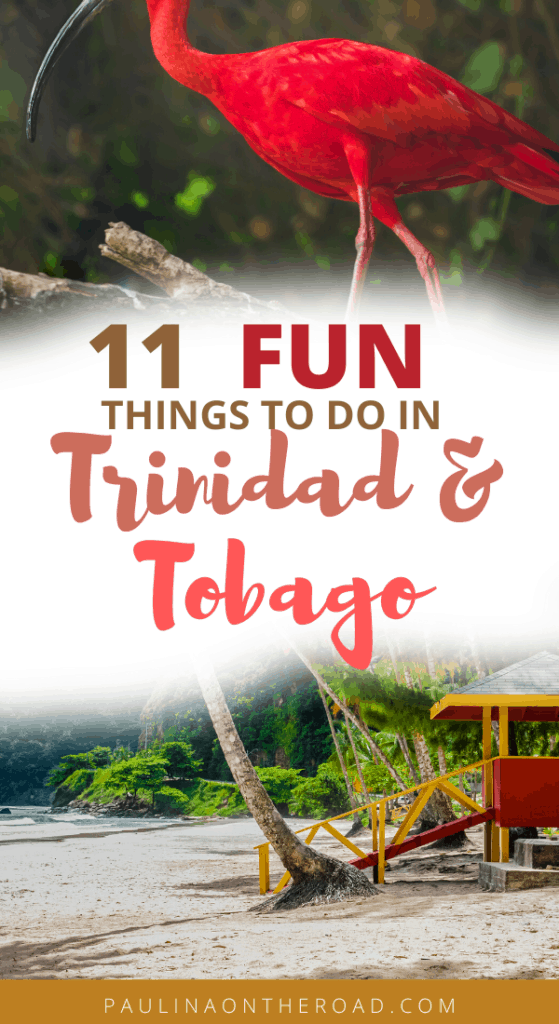 What To Do on Trinidad Island. Discover the best beaches of the Caribbean island, its vibrant steelpan music scene, the best hiking trails and even Hindu temples. Travel To Trinidad & Tobago will leave you amazed. This guide will take you to the best beaches in Trinidad, Triniad&Tobago and how to go to Trinidad Carnival. #trinidadandtobago #trinidad #tobago #trinidadisland #islandlife #caribbean #music #hiking #nature #cocoa #waterfalls #trinidadcarnival #carribbeantravel #wheretogo #tnt #trini