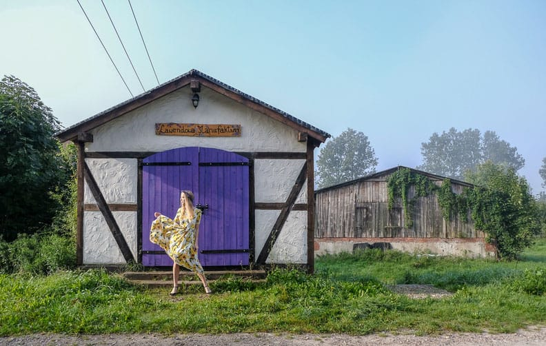 kashubian lake district, hanging out at the Lavender Farm