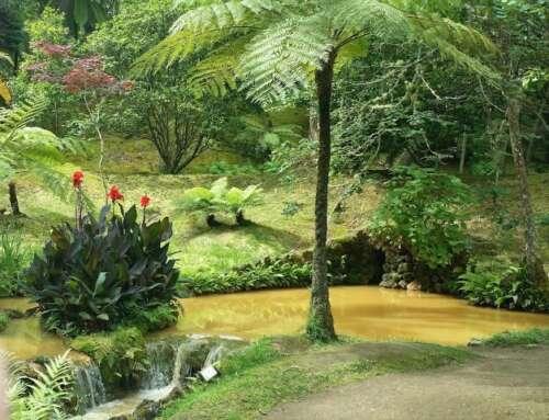 Furnas, Azores: Pura Naturaleza