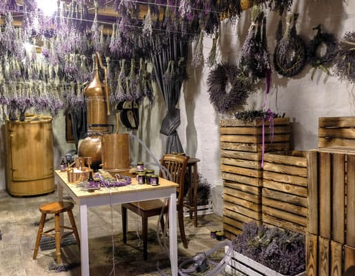 gdansk trips you should take, materials at the lavender farm in kashubia