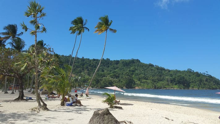 top things to do in trinidad, beach with palm trees