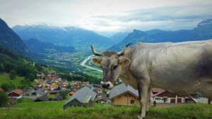 15 Awesome Things To Do in Liechtenstein on a Long Weekend