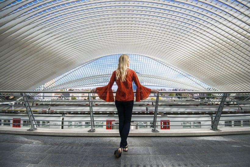 lieja, belgica, liege, que hacer, fin de semana, dia, hoteles, dormir, comer, bruselas, tren, brujas, como llegar, standard, aeropuerto, luxemburgo, bruxelles, vacaciones, que visitar, espana, madrid, blog, viajar, viaje, calatrava, tren, estacion