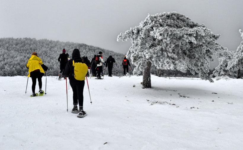 Madrid, snow, hiking, mountains, sports, ski, snowboard, nieve, montaña, deporte, esqui, paulina