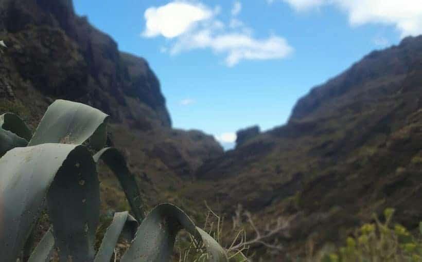 masca, trekking, hiking, senderismo, tenerife, canarias, canary islands, rutas, visitas, como llegar, espana, spain, how to, adeje, excursion, viaje, travel