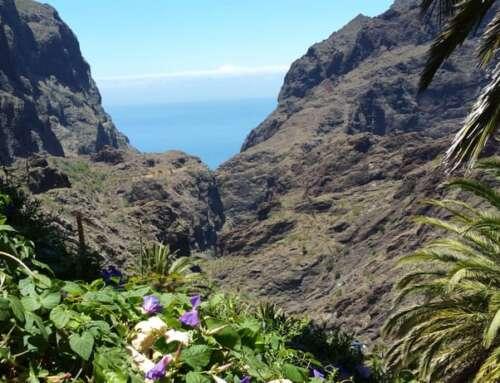 Barranco de Masca: La Mejor Ruta de Tenerife?