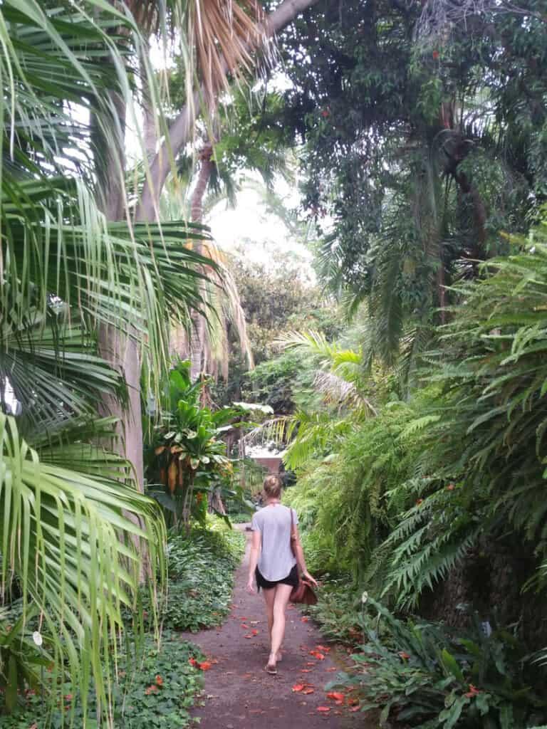 orotava-puerto-de-la-cruz-excursion-tenerife-teneriffa-comer-eat-restaurante-que-ver-holidays-vacaciones-cultura-culture-history-balcon-casa-beach-hiking-teide-island-isla-canary-canarias-tourism-jardin-botanico-botanical-garden.jpg
