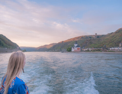 8 Highlights of a Rhine River Day Cruise, Germany