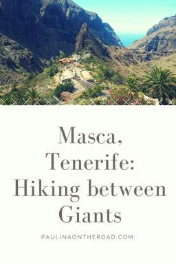 Discover the best hiking trail in Tenerife: the Masca Walk. Located in the Valley of Los Gigantes, the village of Masca seems to be lost in time. Get all the information on weather, tours and the beach