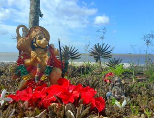 Sur de Trinidad Isla (Trinidad y Tobago): Templos Hindúes y Lago de Brea