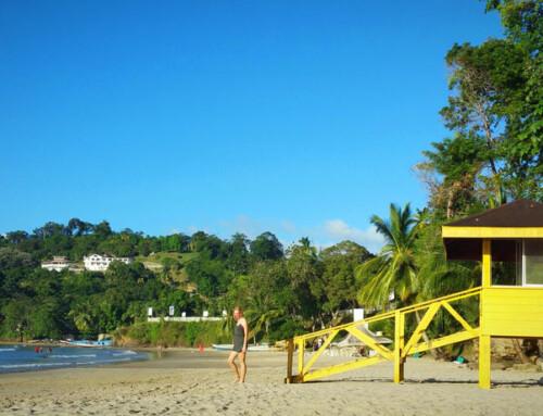 Trinidad y Tobago: Cascadas y Bahías