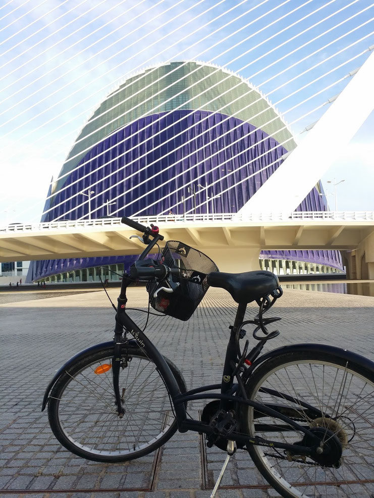 Valencia: how to discover the seven seas by bicycle