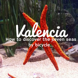 Valencia, bike, bici, oceanografic, spain, españa, turismo, travel, viaje, excursion