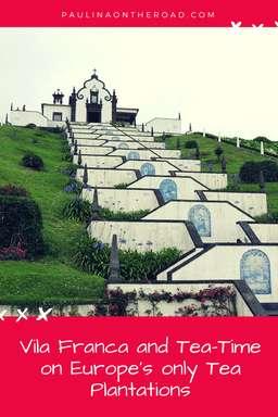 vila franca, sao miguel, tea plantation, azores