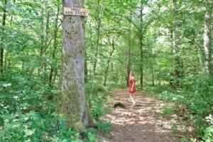 Hiking in Belgium: 20 Best Hiking Trails  in Belgium