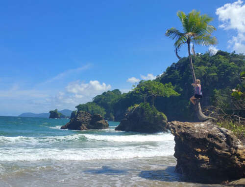 Trinidad & Tobago: 11 Things To Do in Trinidad Island