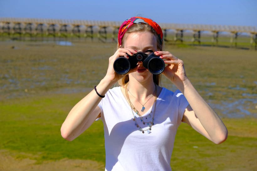 what to do during an algarve winter, birdwatching in Ria Formosa with binoculars