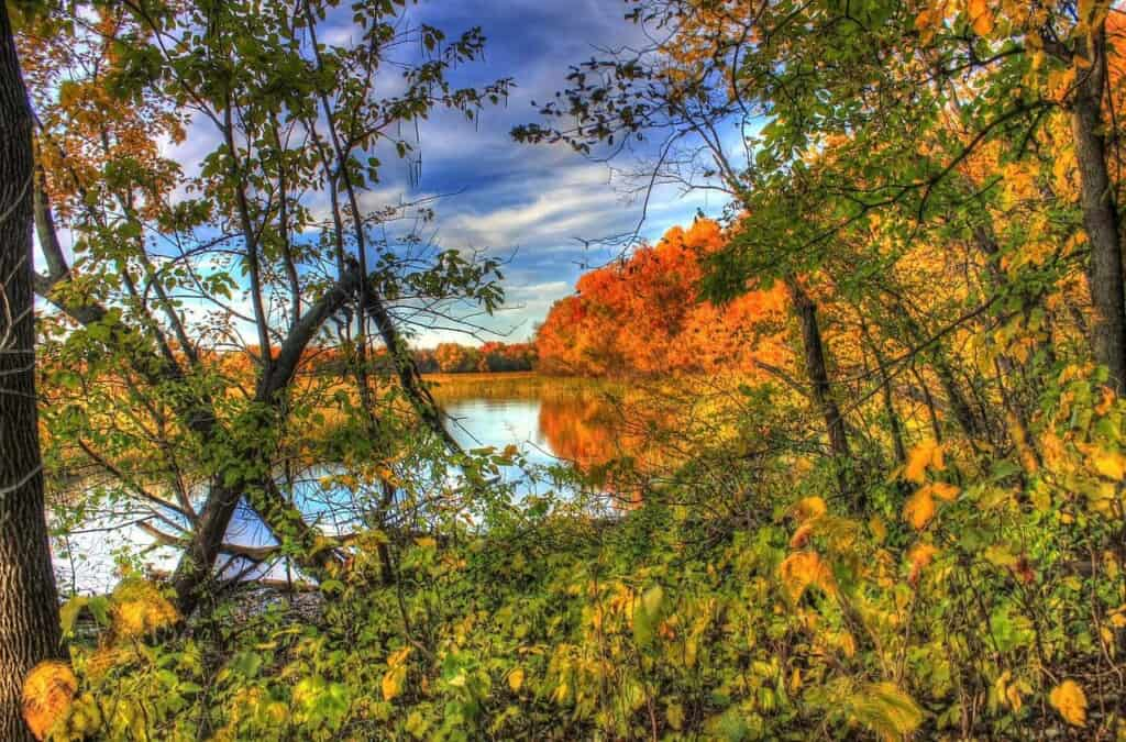 best day trips in wisconsin, view of lake from the beautiful kettle moraine state forest