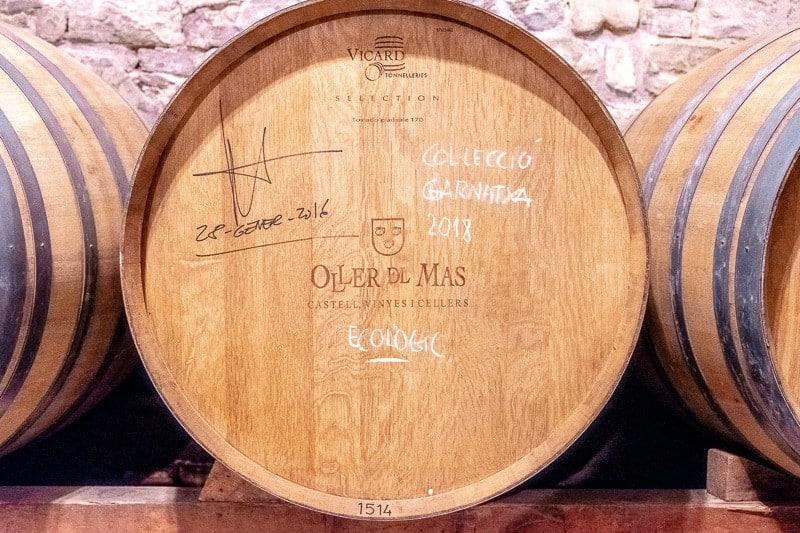 wine tour barcelona, wineries near barcelona, Cava Tasting inoller del mas, champagne tasting, catalonia, winery, vineyards, montserrat, red wine, white whine, barrel