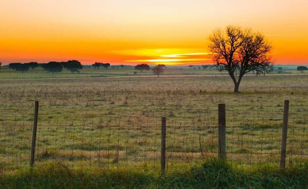Things to do in Alentejo Portugal, Nature park at sunset