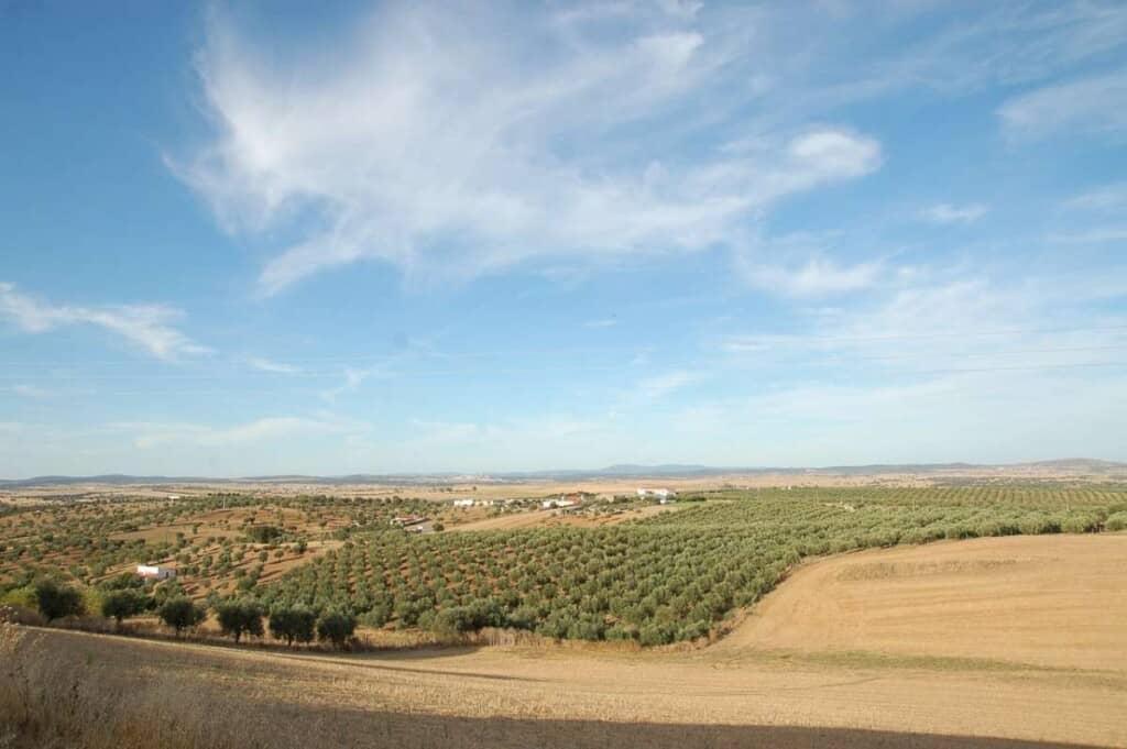 Why visit Alentejo Portugal, Countryside area of Alentejo