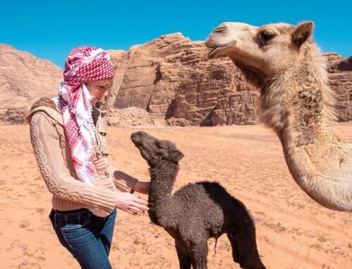 20 Photos That Will Make You Want Visit Jordan