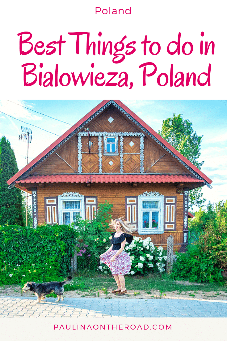 Are you traveling to Bialowieza, Poland? This guide takes you to the off-beat places and shares the best things to do besides hiking in Bialowieza Forest Poland. #bialowieza #podlasie #poland #forest