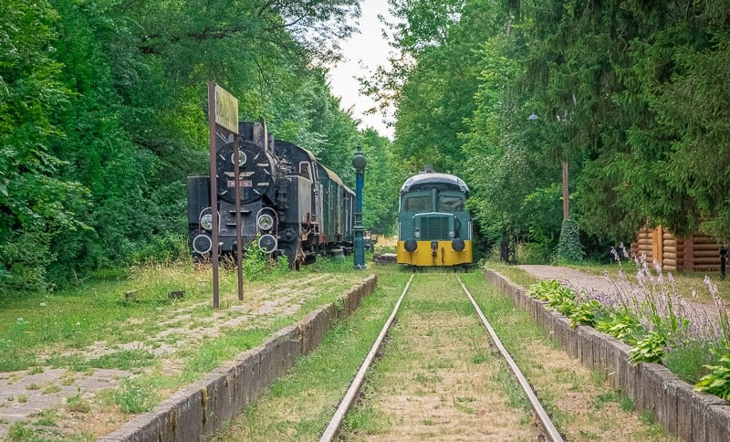 reasons to visit podlasie, podlaskie, eastern poland, bialowieza forest, unesco heritage, from warsaw, polish food, sustainable travel, carska, train station,