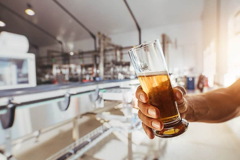 Close up of brewer testing beer at brewery factory. Man hand holding a sample glass of beer.