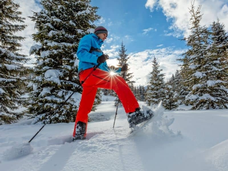 snowshoes, snow shoing in the winter
