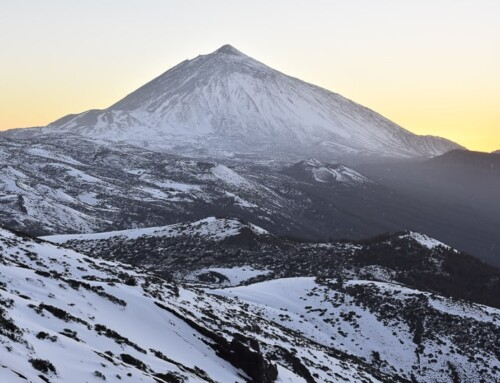 Christmas in Tenerife: 10 Merry Things To Do