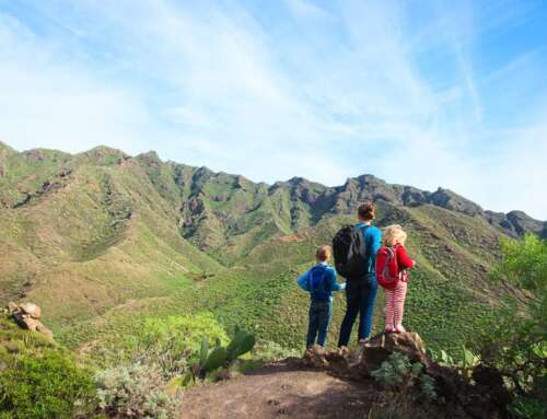 15 Best Things to do in Tenerife with Kids