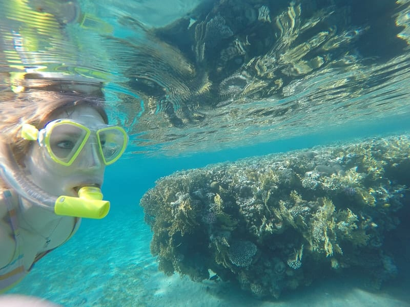 things to do in jordan, snorkeling and diving in aqaba
