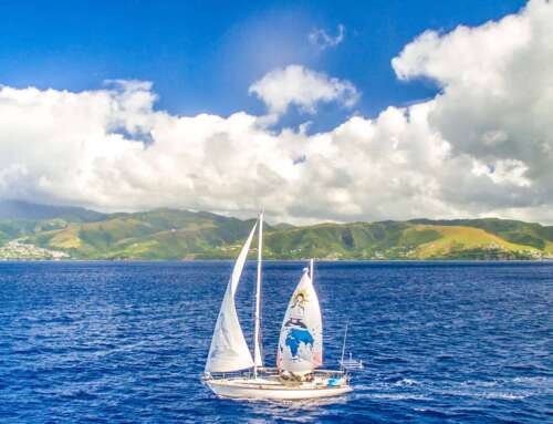 8 Reasons Why Sailing is the Best Form of Sustainable Travel