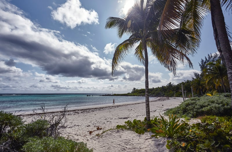 best beaches in riviera maya, palm trees,, xpu-ha beach, hotels, resorts