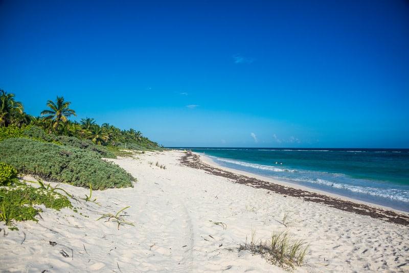 best beaches in riviera maya, palm trees,, xcacel beach, hotels, resorts
