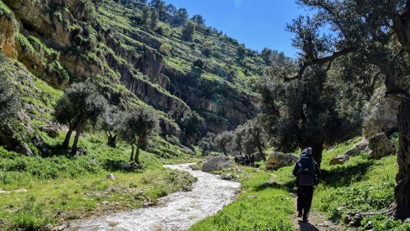 hiking in jordan, hiking near amman