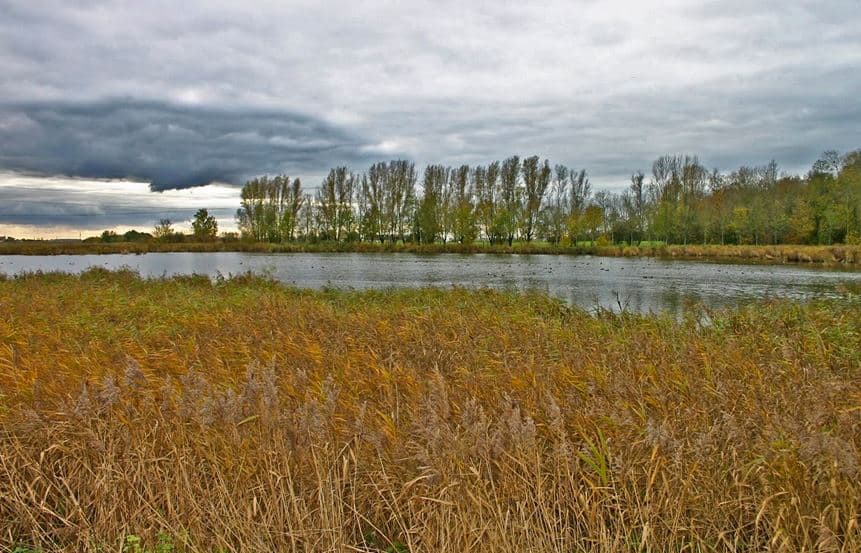 Best Hiking Trails near the Belgian Coast, small river in the coastal region of Flandres