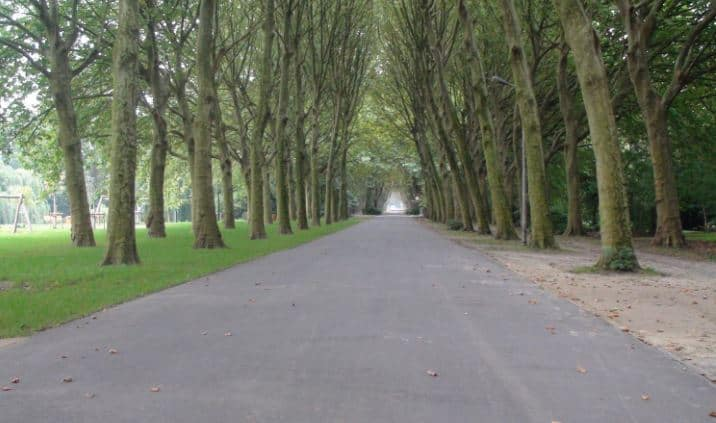 Best Medium Level Hiking Trails near Brussels, The way among the trees