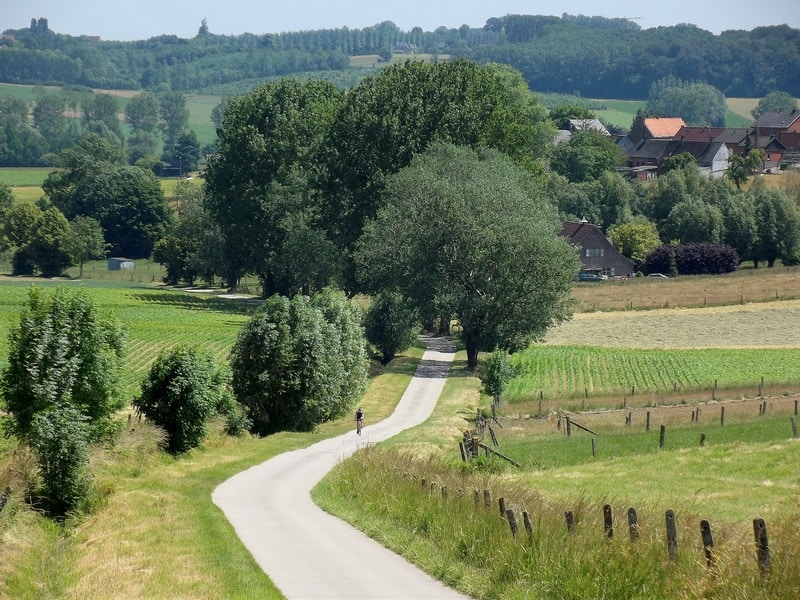 Best Hiking Trails in Belgium, A man is riding a bicycle and there is greenery all around