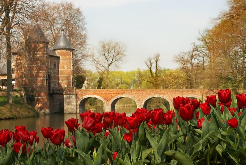 Beautiful red tulips in the castle garden of Groot Bijgaarden, Belgium, best castle garden in belgium