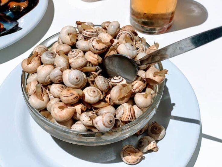 Best Spanish snacks, Caracoles – Snails