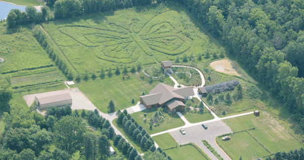 Cool places in appleton, WI, Top view of Butterfly Gardens of Wisconsin