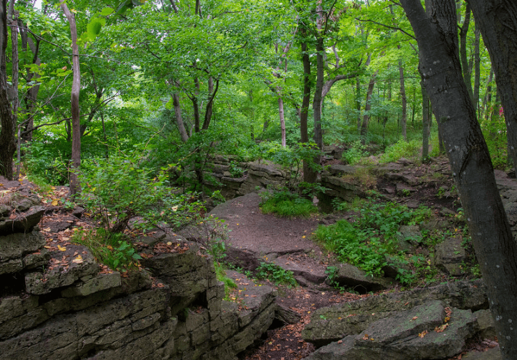 best state parks in Wisconsin, best green view of High Cliff State Park