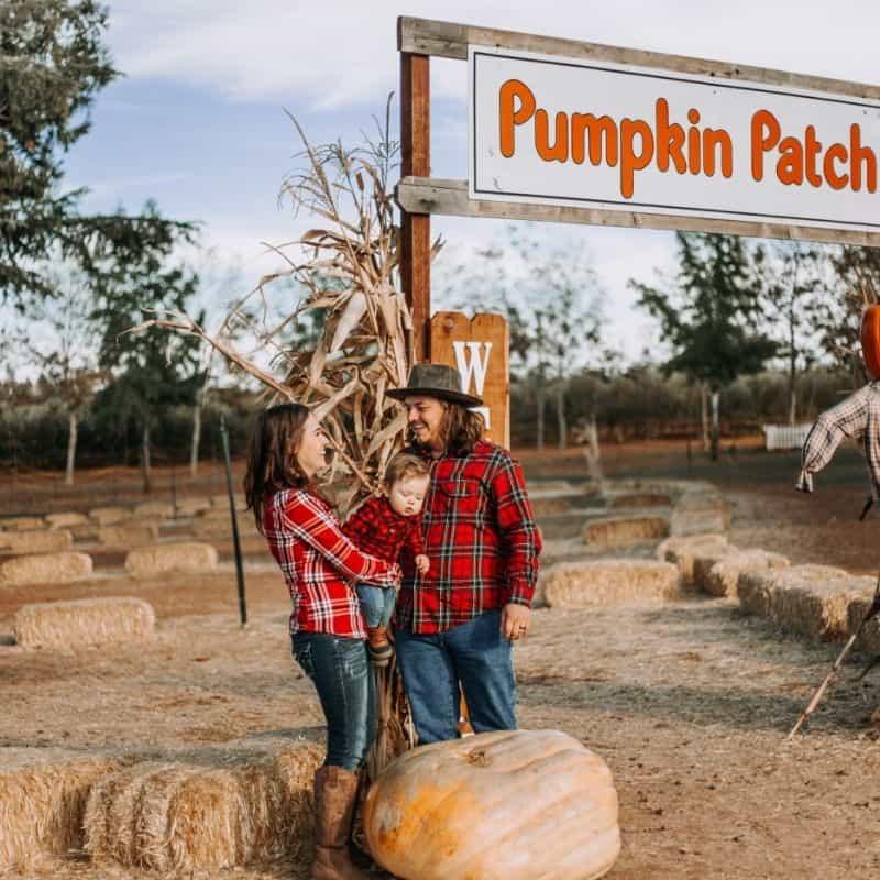 pumpkin patch wisconsin