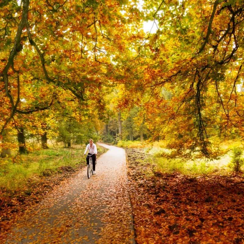 cycling in fall, bicycle, cycling in wisconsin