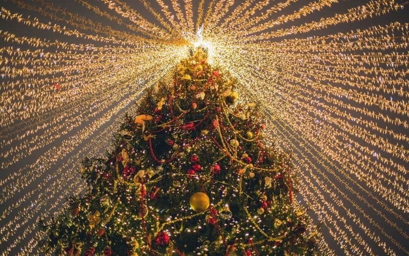 christmas getaways in wisconsin, Best view of christmas tree with full of light