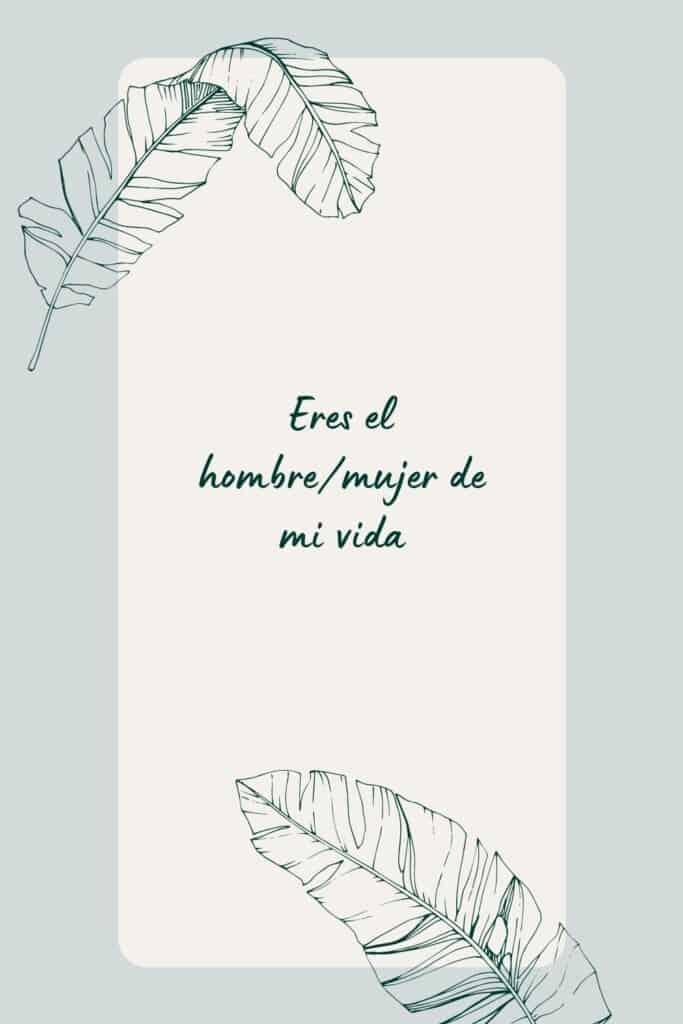 romantic spanish phrases (13), Eres el hombre/mujer de mi vida