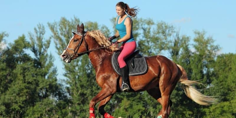 weekend getaways in central wisconsin, Girl riding a horse on the farm